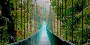 Puentes del parque Arenal de Costa Rica
