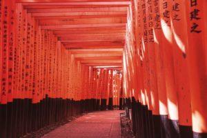 color del año 2019 - Fushimi Inari