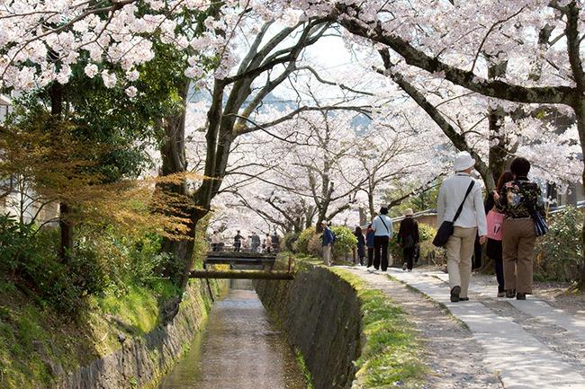 Japon-CaminodelosFilosofos-Que ver en Kioto