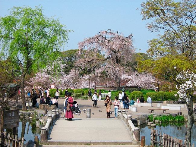 Japon-ParqueMaruyama-GrandVoyage
