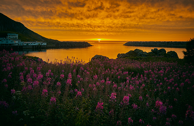 Noruega-soldemedianoche-GrandVoyage
