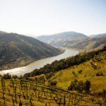 Portugal - Qué ver en el Valle del Douro