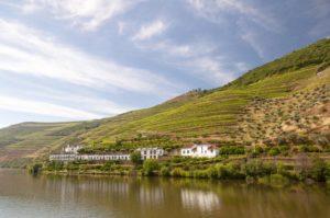 Portugal - Qué ver en el Valle del Douro - reflejo