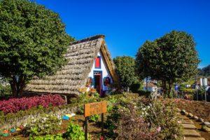 Madeira Santana casas tradicionales con flores
