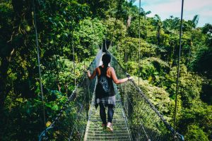 Puentes colgantes del Bosque Nuboso de Monteverde