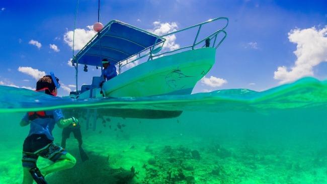 Snorkel en Playa del Carmen, una de las joyas de la Riviera Maya