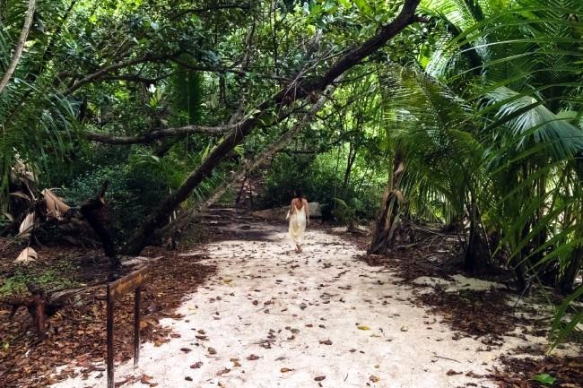 Naturaleza - por qué visitar islas Seychelles