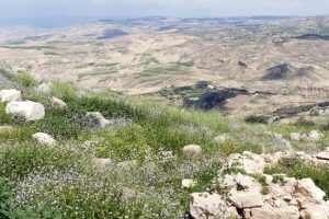 Monte Nebo - Qué ver en Jordania